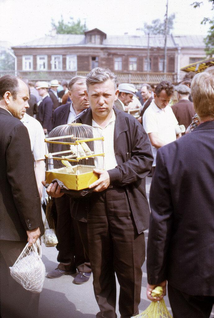 66899 Птичий рынок 73 Andy Sedik.jpg