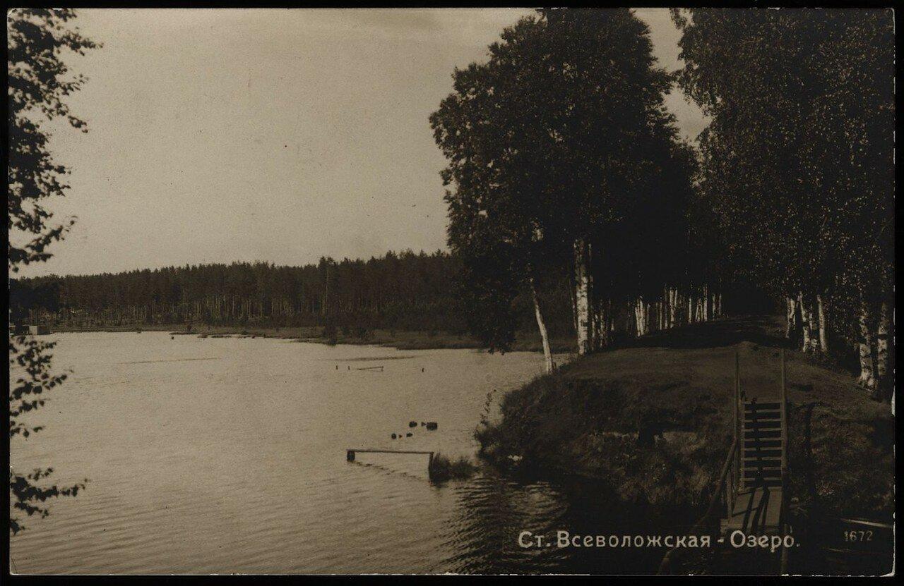 Всеволожск. Васильевское озеро