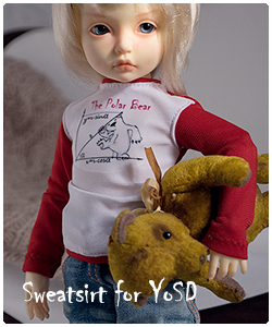 2017 sweatshirt for yosd