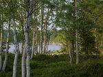 Июль, жара, Ковдозеро