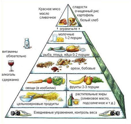 Гарвардская пирамида здорового питания