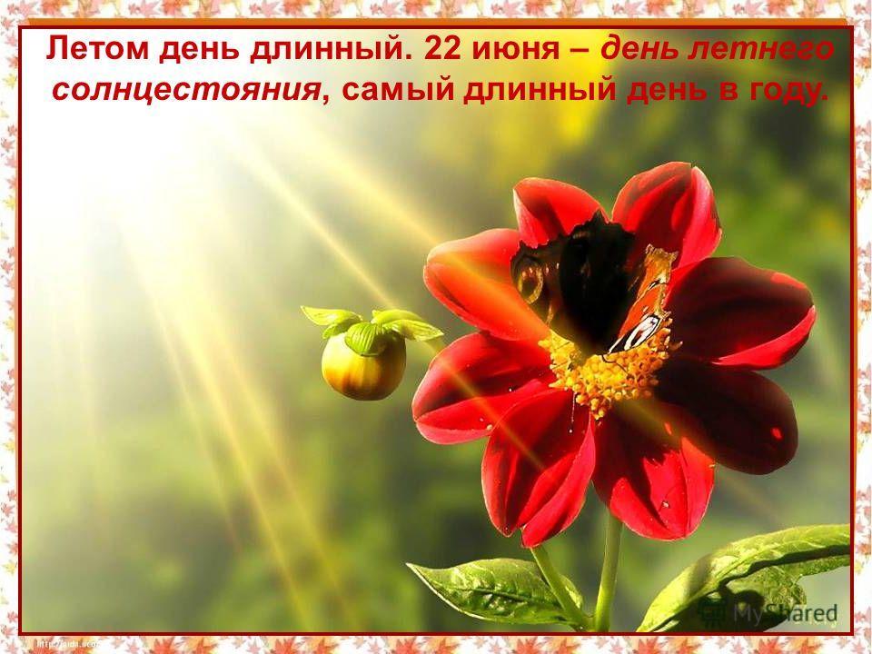 Летом день длинный. 22 июня – день летнего солнцестояния, самый длинный день в году