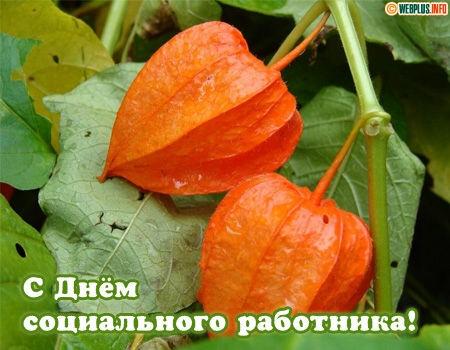 Открытки. С днем социального работника. Яркие цветы открытки фото рисунки картинки поздравления
