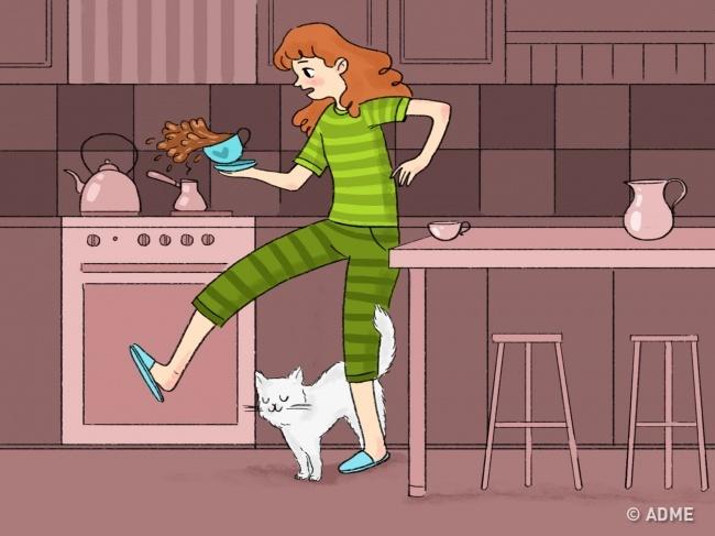 Оставляя навас свой запах, кот сообщает потенциальным конкурентам, что выуже заняты. Да, коты— из