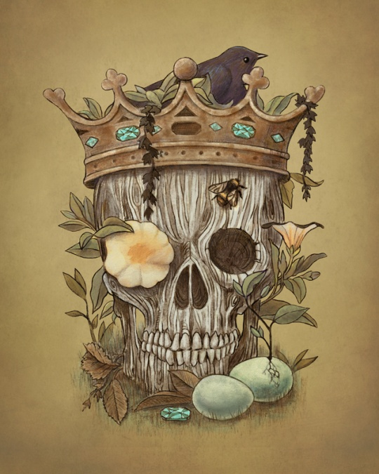 Beautiful Detailed Illustrations by Terry Fan