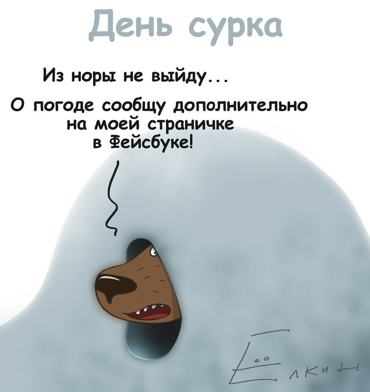 День Сурка