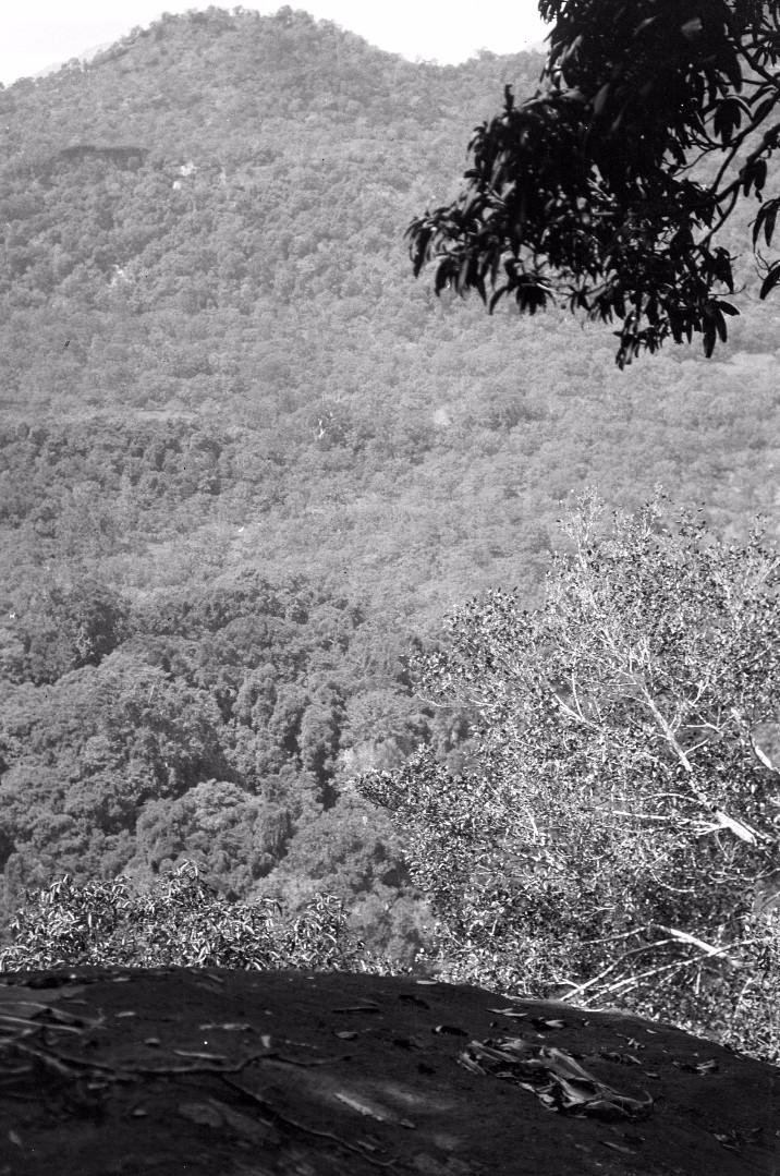 162. Вид из леса на горы в долине Дани-Гала