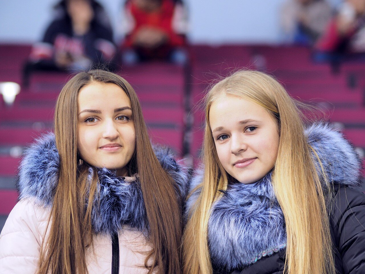 104Стальные Лисы - Омские Ястребы 13.12.2016