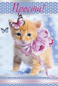 Прости! Котенок с цветами и бабочками