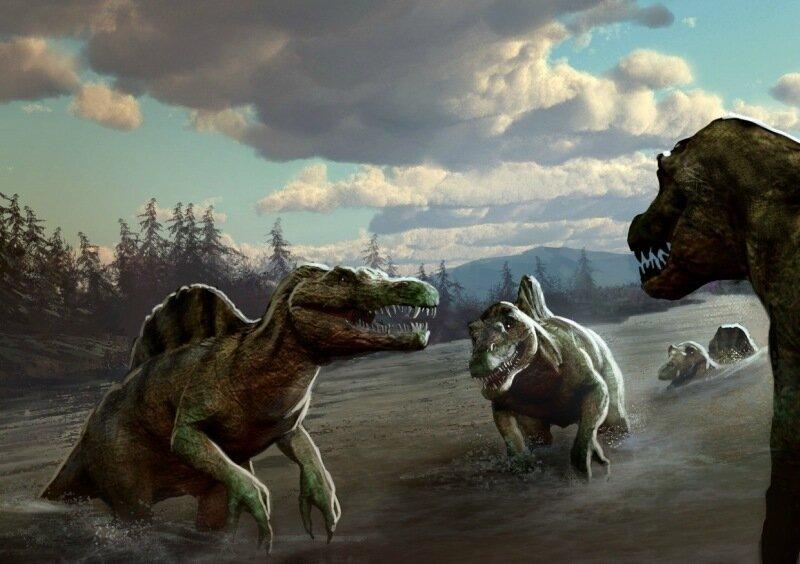Австралийка на пляже нашла следы гигантских динозавров