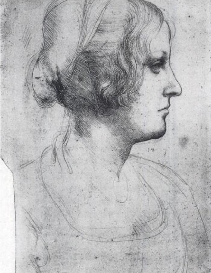 4. «Даму с горностаем» Леонардо да Винчи писал в три этапа. По мнению Паскаля Котта, изучающего шеде