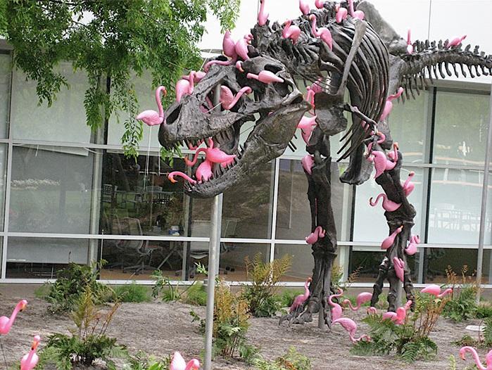 1. Стая розовых фламинго может обглодать тираннозавра за считаные секунды.