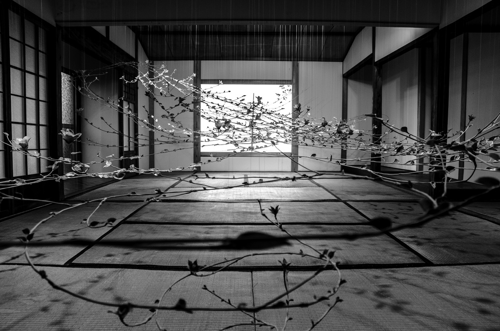 While attending the Setouchi International Art Festival in Japan, photographer Kurt Gledhill snapped