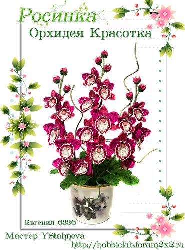 """Галерея работ творческой мастерской """"Орхидея Красотка"""" 0_12ea2a_978c5fbe_L"""