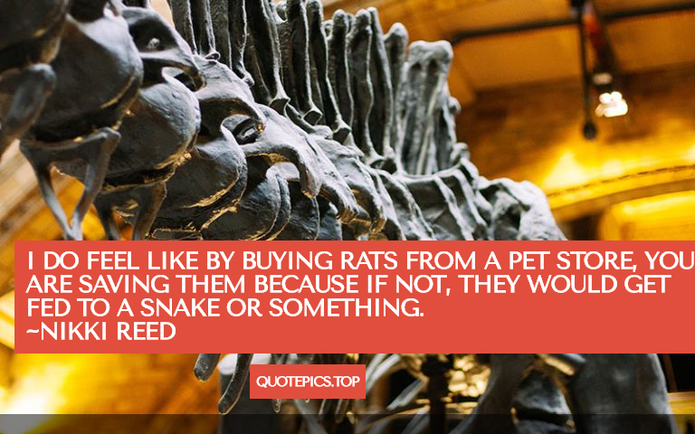 I do feel like by buying rats from a pet store, you are saving them because if not, they would get fed to a snake or something. ~Nikki Reed