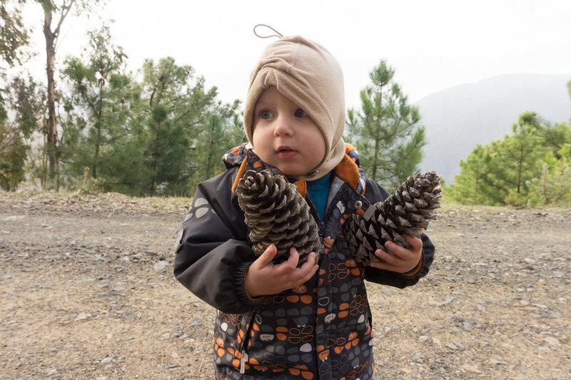 ребенок и большие сосновые шишки в андалусии