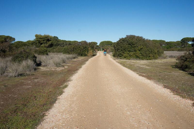 дорога по парку за городом Puerto Real, Кадис