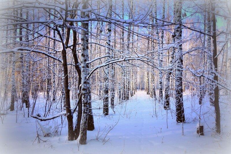 мороз и солнце - день чудесный...