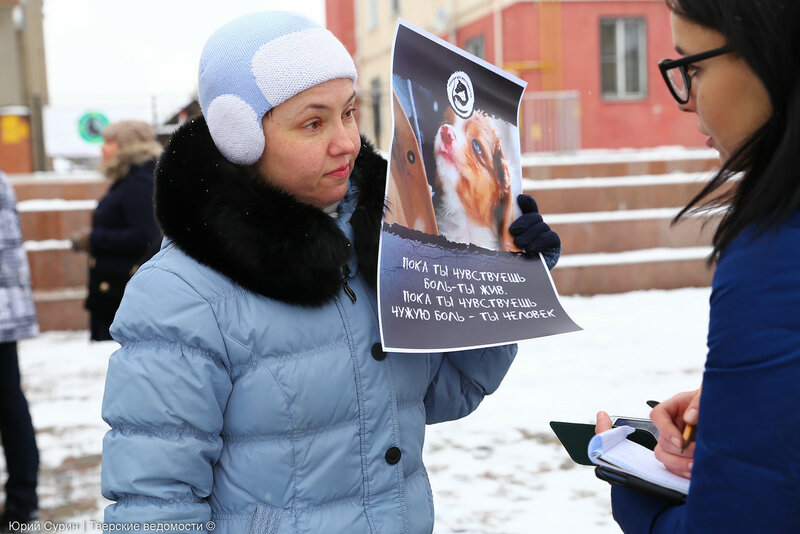 Митинг против жестокого обращения с животными в Твери