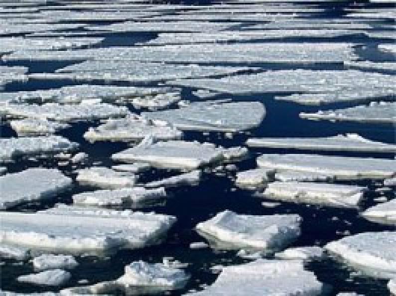 Самая суровая зима века, называется: В Украине ожидается ледоход и паводок за весну в декабре