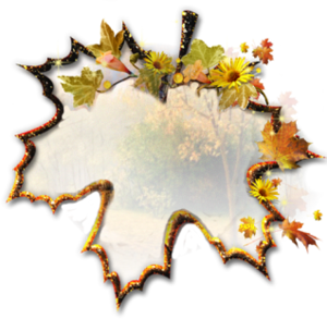 foglie___2_.png