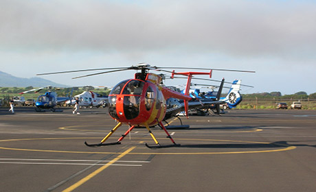 ВПермском крае построят вертолетный центр за900 млн руб.