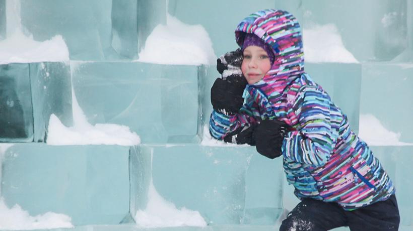 Зимние забавы: в столицеРФ  появится ледяной конструктор