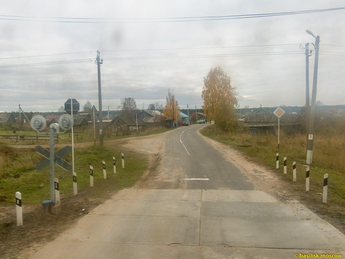 Поезд Вонгуда - Емца. Архангельская область. Сентябрь 2016