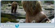 http//img-fotki.yandex.ru/get/172931/4074623.78/0_1bd72c_e7c145_orig.jpg