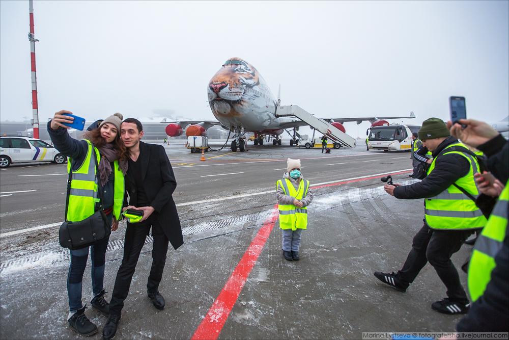 АК Россия Тигролёт