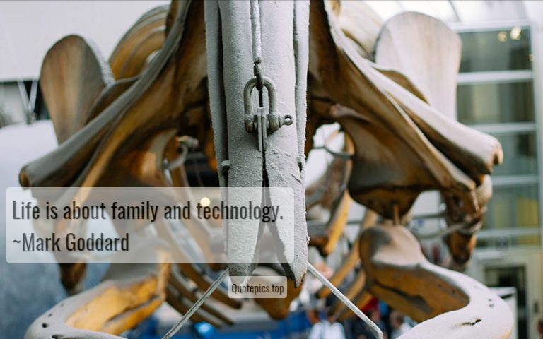 Life is about family and technology. ~Mark Goddard