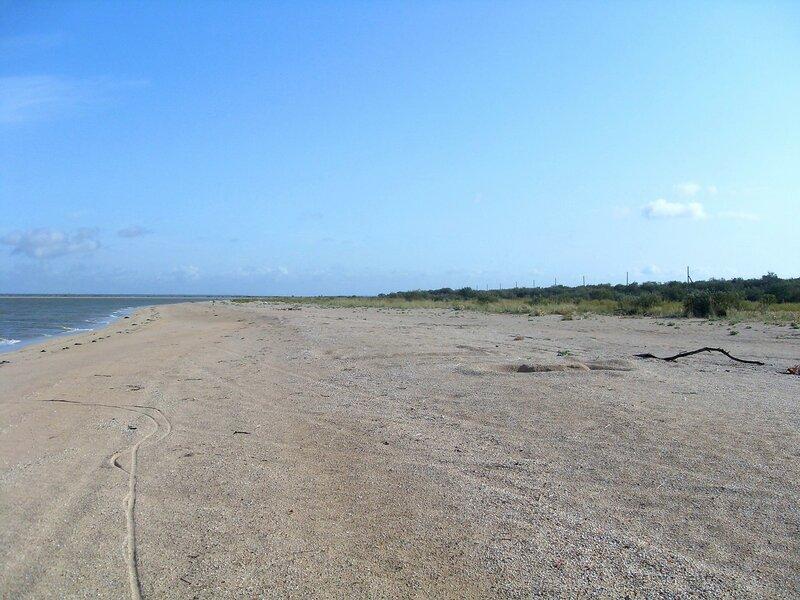 На песках береговых ... SDC14790.JPG
