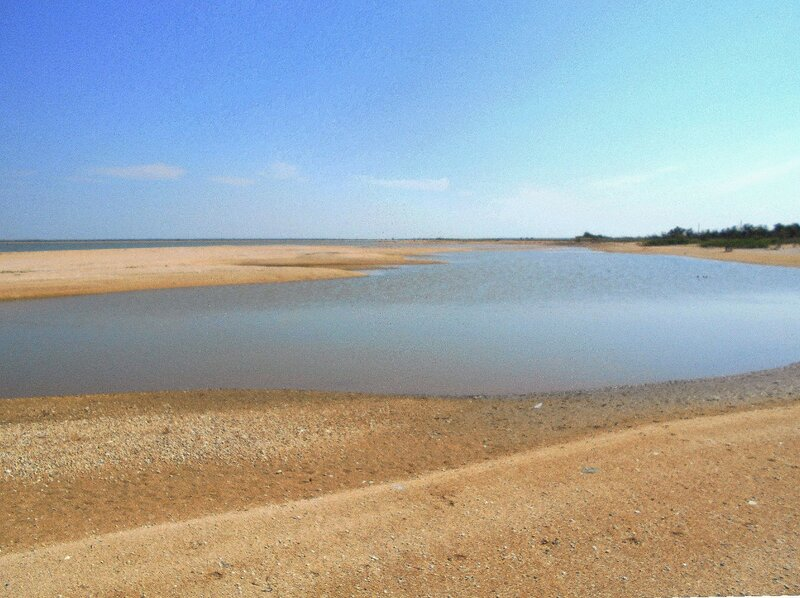 Азовское побережье, на Кубани... DSCN5666.JPG