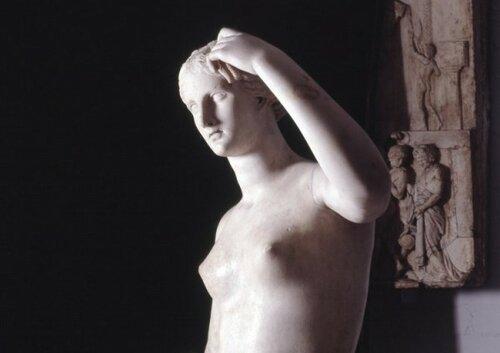 ВБританском музее официант отбил палец устатуи Венеры