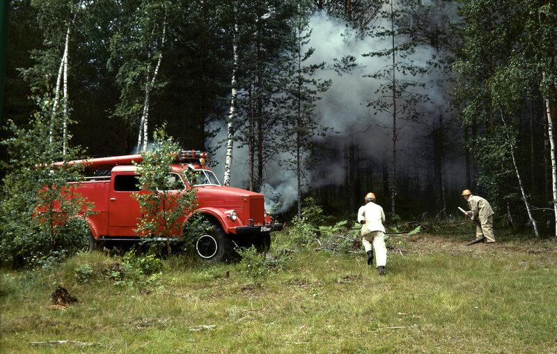 1973 Команда пожарных на тушении лесного пожара. Алексей Бушкин, РИА Новости.jpg
