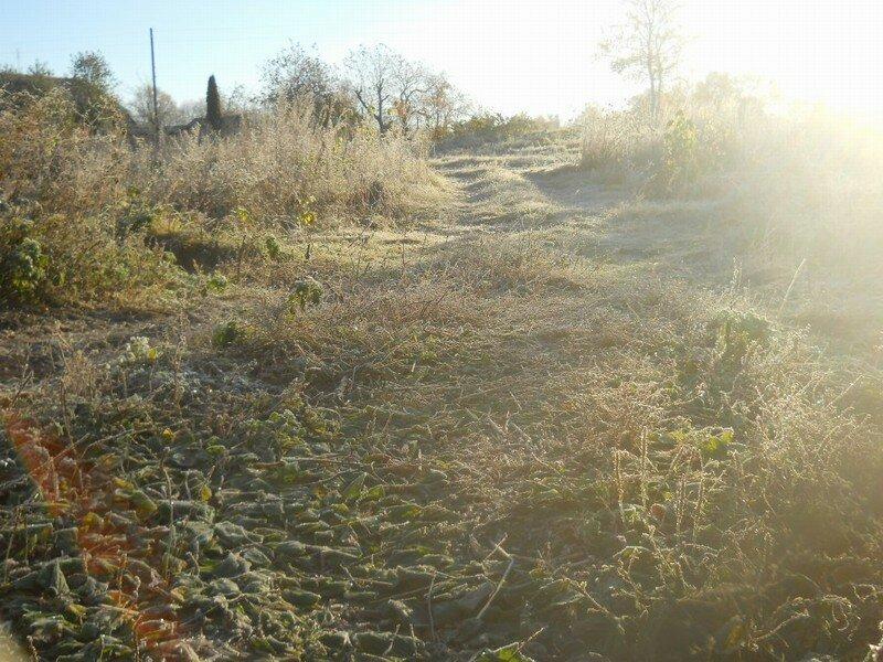 Один деревенский день, с котором всё замёрзло, а потом растаяло.
