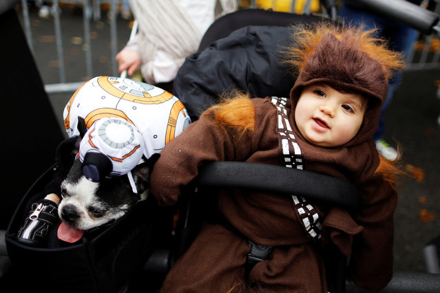 Revellers take part in the annual halloween dog parade at Manhattan's Tompkins Square Park in New Yo