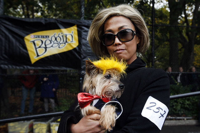 Kathy Lee and her Yorkie Freddy pose as Hillary Clinton and Donald Trump at the Tompkins Square Hall