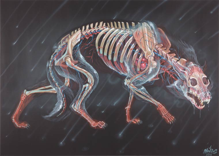 Translucent Fear - When the street artist Nychos reveals the anatomy of animals