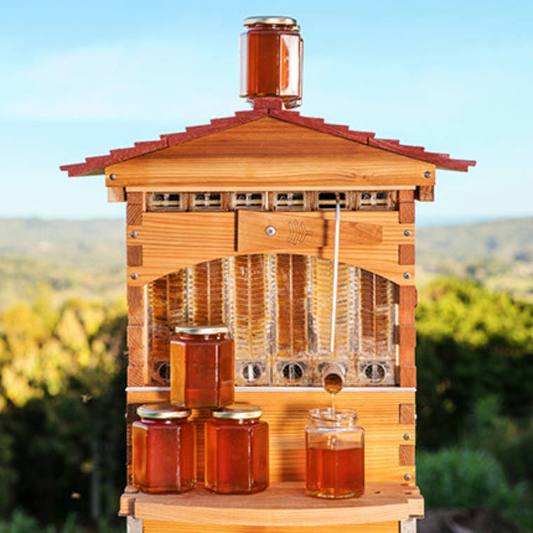 Flow Hive - These revolutionary hives collect honey on tap