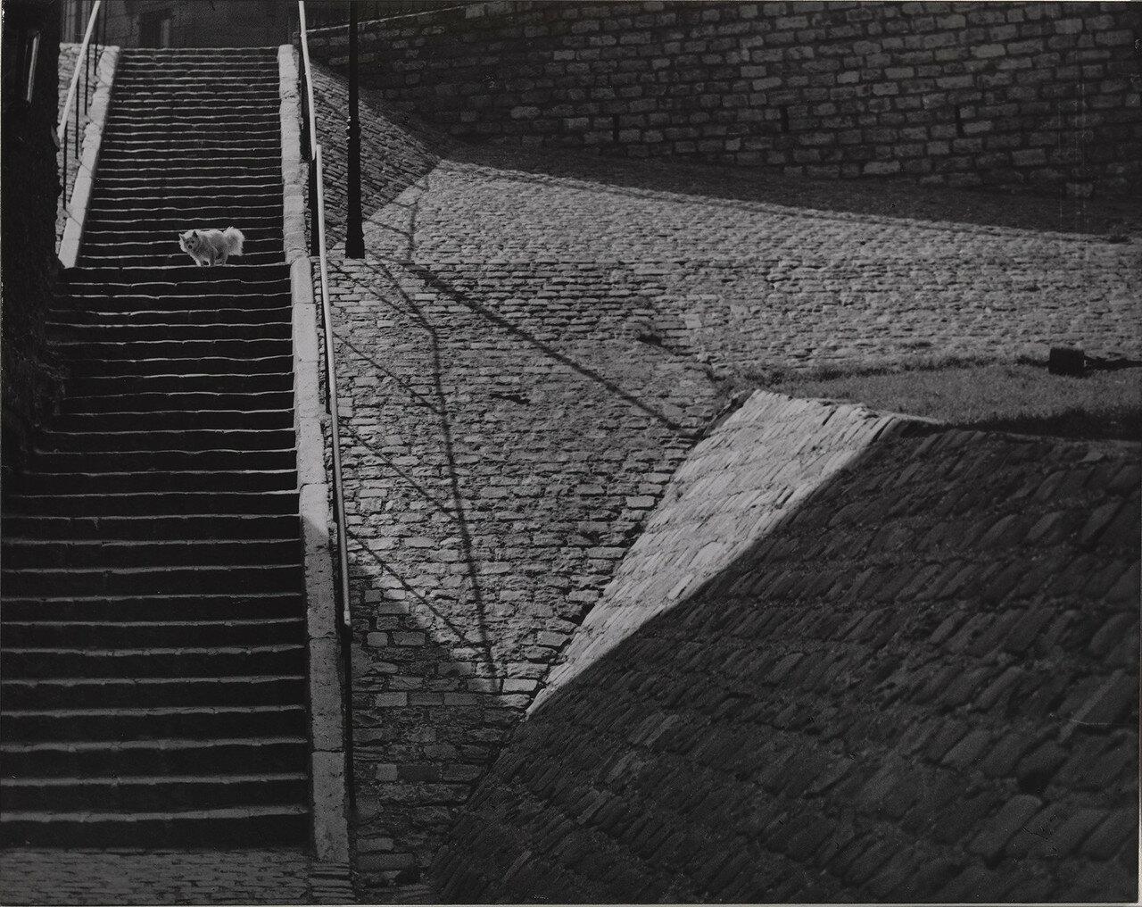 1932. Лестница на Монмартре, Париж