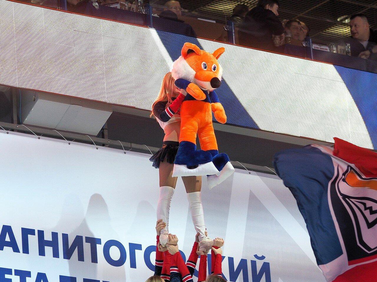 110Металлург - Витязь 25.11.2016