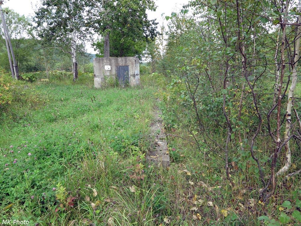 Перрон бывшей станции Ожидаевка