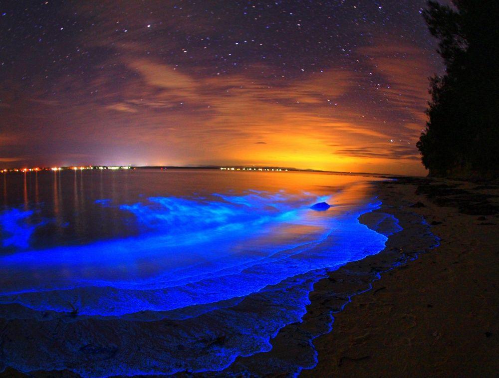 Биолюминесценция в озерах Джипсленд.