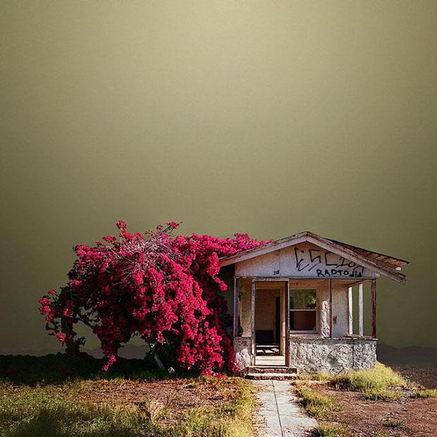 Забытые уголки в Калифорнийской пустыне