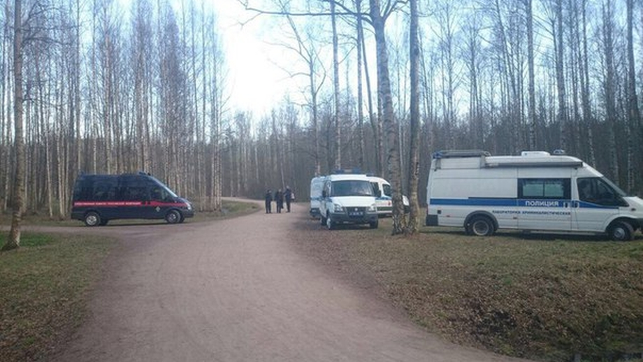 Впарке Сосновка Петербурга найдено тело обнаженной женщины сножевыми ранениями