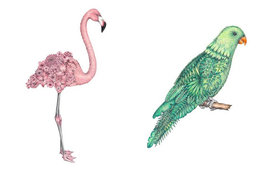 Surreal Hand-Drawn Animal Illustrations by Chloe Mickham