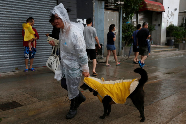 A woman and her dog dress in raincoats as they walk while Typhoon Haima approaches in Hong Kong, Chi