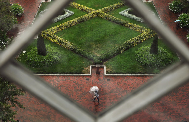 Viewed from a window of the Smithsonian Institution Building or the Smithsonian Castle an umbrella c