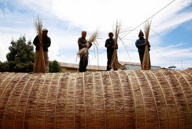"Builders hold totora reeds on the ""Viracocha III"", a boat made only from the reed, as it is being pr"